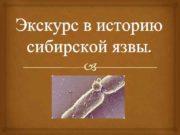 Экскурс в историю сибирской язвы Сибирская