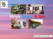 Mriya Resort Spa БРИЛЛИАНТ ТУР Петербург