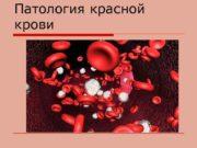 Патология красной крови Анемия o Анемия