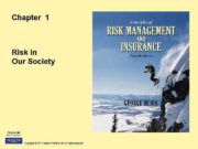 Chapter 1 Risk in Our Society Copyright