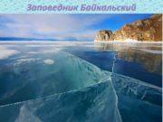 Заповедник Байкальский Географическое расположение Байкальский государственный биосферный