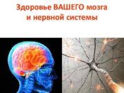 Здоровье ВАШЕГО мозга и нервной системы По