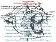 Список участников Благотворительного Фестиваля Единоборств Kostanai Fighter 21
