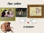 Про собак и кошек Наши задачи