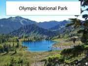 Olympic National Park Geographical location Olympic National