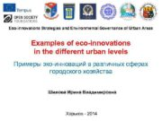 Eco-innovations Strategies and Environmental Governance of Urban Areas
