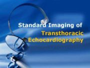 Standard Imaging of Transthoracic Echocardiography Terminology A