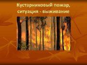Кустарниковый пожар ситуация — выживание Имитационная модель
