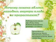 Работу выполнили Дроздова Анна Кобзева Елизавета ученицы 1
