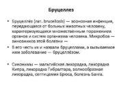 Бруцеллез Бруцеллёз лат brucellosis зоонозная инфекция