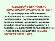 КЛЕЩЕВОЙ и ЦЕНТРАЛЬНОЕВРОПЕЙСКИЙ ЭНЦЕФАЛИТЫ КЭ Острое
