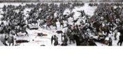 Ледовое Побоище Работу выполнил Платонов Константин Б -ИМО-16