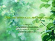 Экологическая экспертиза Авторы Немченко Екатерина Савосткина Екатерина Ковтун