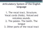Articulatory System of the English language 1 The