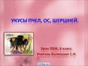 900 igr net Укусы пчелы и осы