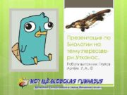 Презентация по Биологии на тему первозвери Утконос Работу