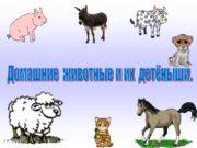 Домашние животные и их детёныши. СОБАКА Косточки собака