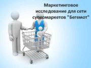 Маркетинговое исследование для сети супермаркетов Бегемот Компания