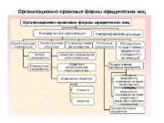 Организационно-правовые формы юридических лиц Организационно правовые формы