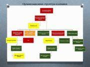 Организационная структура компании Руководитель компании Генеральный Директор Финансовый