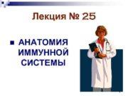 Лекция 25 n АНАТОМИЯ ИММУННОЙ СИСТЕМЫ 1