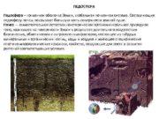 ПЕДОСФЕРА Педосфера почвенная оболочка Земли глобальная почвенная