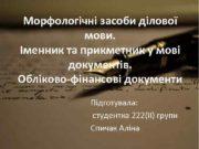 Морфологічні засоби ділової мови Іменник та прикметник у
