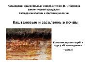 Презентация 8 Каштановые и засоленные почвы