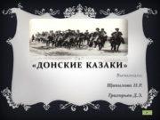 «Донские Казаки» Выполнили: Щипилова Н.Р. Григорьев Д.Э. Наше