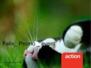 Felix_ Promo _ event Action agency for Nestle