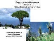 Структурная ботаника Лекция 1 Растительные клетки и ткани