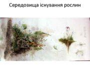 Середовища існування рослин Екологія Наука про взаємозв язки
