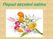 Перші весняні квіти Пролісок — рід трав янистих