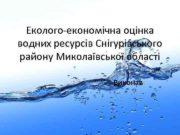 Еколого-економічна оцінка водних ресурсів Снігурівського району Миколаївської області