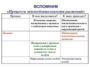 ВСПОМНИМ Процессы жизнедеятельности растений Процесс В чем заключается