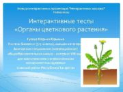 Конкурс интерактивных презентаций Интерактивная мозаика Pedsovet su Интерактивные