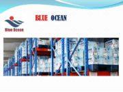 BLUE OCEAN BLUE OCEAN Blue Оcean International