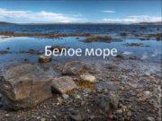 Белое море Бассейн океана Белое море внутреннее
