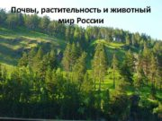 Почвы растительность и животный мир России Общие
