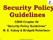 Security Policy Guidelines CSH 5 Chapter 44 Security