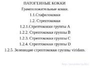 ПАТОГЕННЫЕ КОККИ Грамположительные кокки. 1. 1. Стафилококки 1.