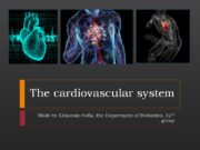 The cardiovascular system Made by Klimenko Sofia, the