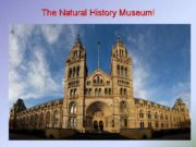The Natural History Museum is one of three
