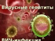 Вирусные гепатиты ВИЧ-инфекция  ВИРУСЫ ГЕПАТИТОВ В.