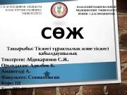 Презентация Адилбек К Амангелді А