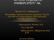 Презентация Акибек А.И ДФ 113дефектология