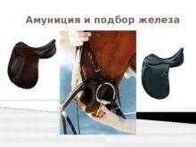 amuniciya_i_podbor_gheleza_0.jpg