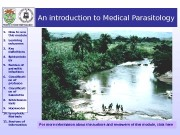 Презентация an-introduction-to-medical-parasitology-12893