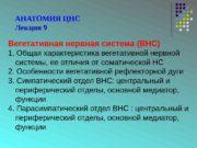 АНАТОМИЯ ЦНС Лекция 9 Вегетативная нервная система (ВНС)