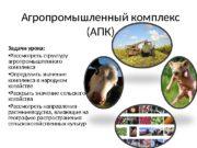 Агропромышленный комплекс (АПК) Задачи урока:  Рассмотреть структуру